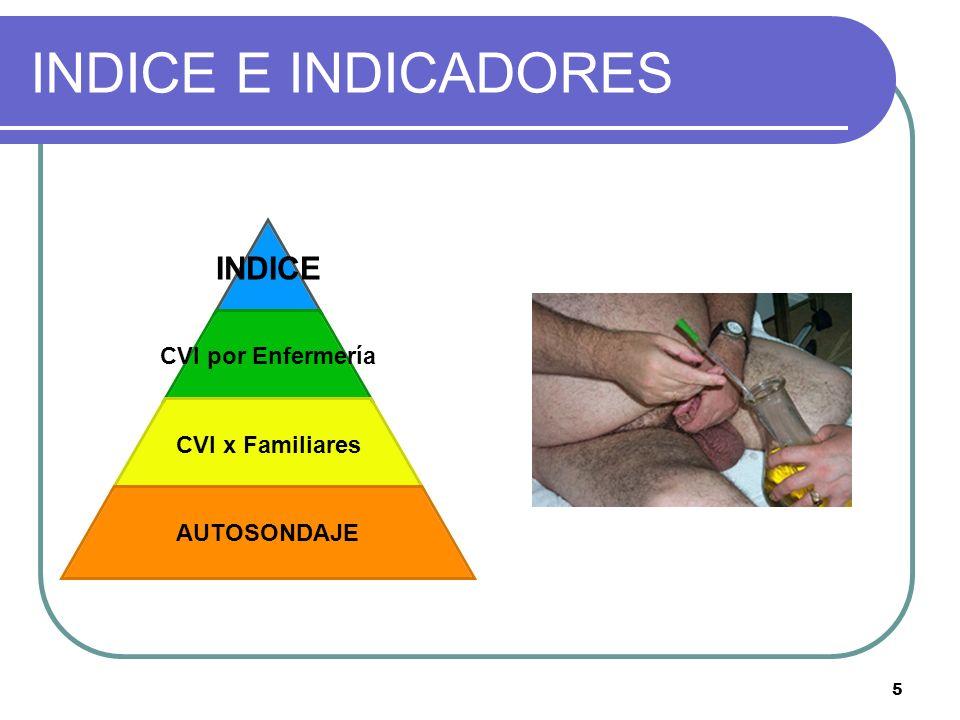 5 INDICE E INDICADORES INDICE CVI por Enfermería CVI x Familiares AUTOSONDAJE