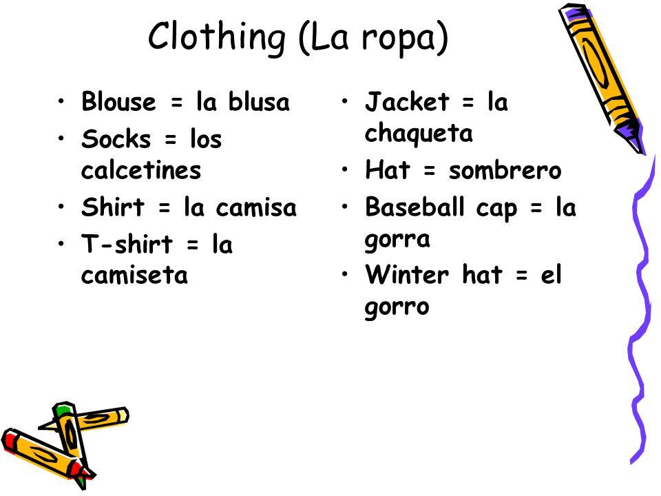 Clothing (La ropa) Blouse = la blusa Socks = los calcetines Shirt = la camisa T-shirt = la camiseta Jacket = la chaqueta Hat = sombrero Baseball cap =