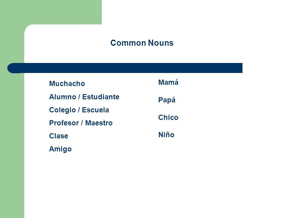 Muchacho Alumno / Estudiante Colegio / Escuela Profesor / Maestro Clase Amigo Mamá Papá Chico Niño Common Nouns