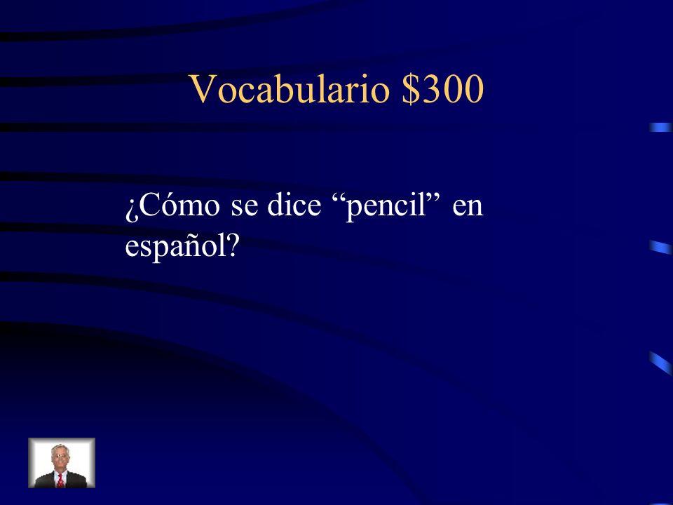 Vocabulario $200 (el) bolígrafo