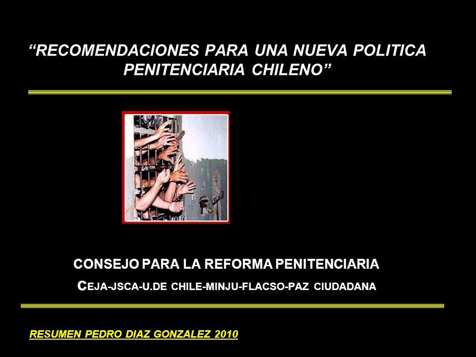 RECOMENDACIONES PARA UNA NUEVA POLITICA PENITENCIARIA CHILENO CONSEJO PARA LA REFORMA PENITENCIARIA c EJA-JSCA-U.DE CHILE-MINJU-FLACSO-PAZ CIUDADANA RESUMEN PEDRO DIAZ GONZALEZ 2010
