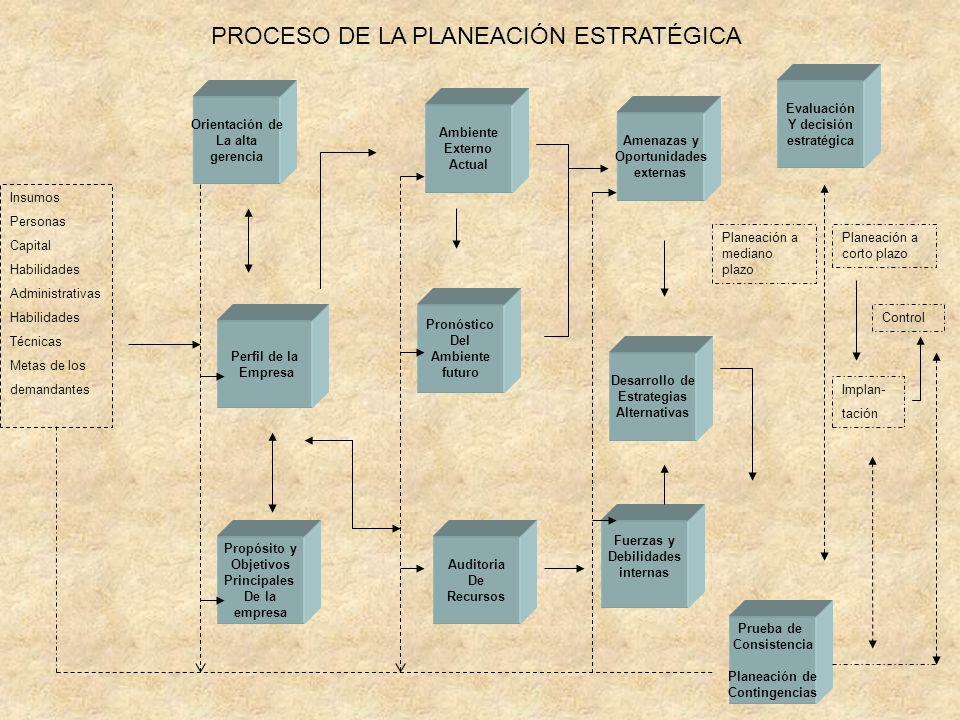 PROCESO DE LA PLANEACIÓN ESTRATÉGICA Insumos Personas Capital Habilidades Administrativas Habilidades Técnicas Metas de los demandantes Orientación de