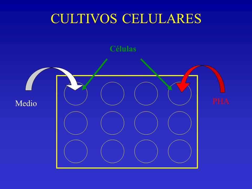 CULTIVOS CELULARES Medio PHA Células