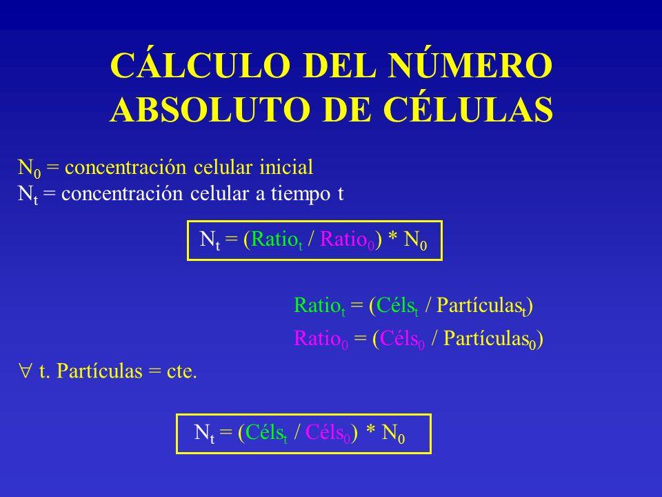 CÁLCULO DEL NÚMERO ABSOLUTO DE CÉLULAS N 0 = concentración celular inicial N t = concentración celular a tiempo t N t = (Ratio t / Ratio 0 ) * N 0 Rat