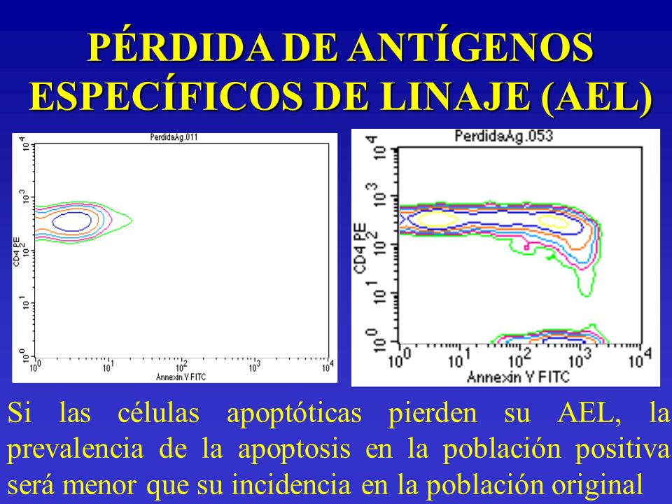 PÉRDIDA DE ANTÍGENOS ESPECÍFICOS DE LINAJE (AEL) Si las células apoptóticas pierden su AEL, la prevalencia de la apoptosis en la población positiva se