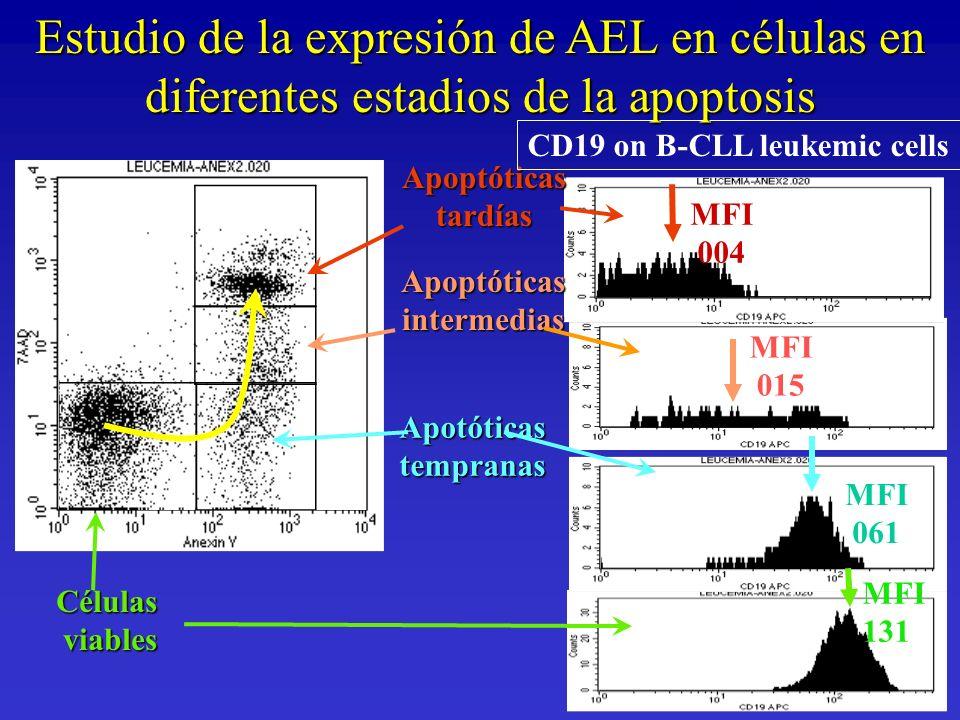 MFI 061 MFI 004 MFI 015Célulasviables Apotóticastempranas Apoptóticastardías Apoptóticasintermedias CD19 on B-CLL leukemic cells MFI 131 Estudio de la