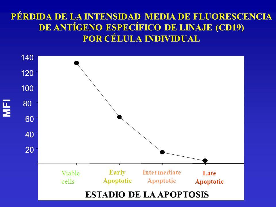Viable cells Early Apoptotic Intermediate Apoptotic Late Apoptotic MFI 20 40 60 80 100 120 140 ESTADIO DE LA APOPTOSIS PÉRDIDA DE LA INTENSIDAD MEDIA