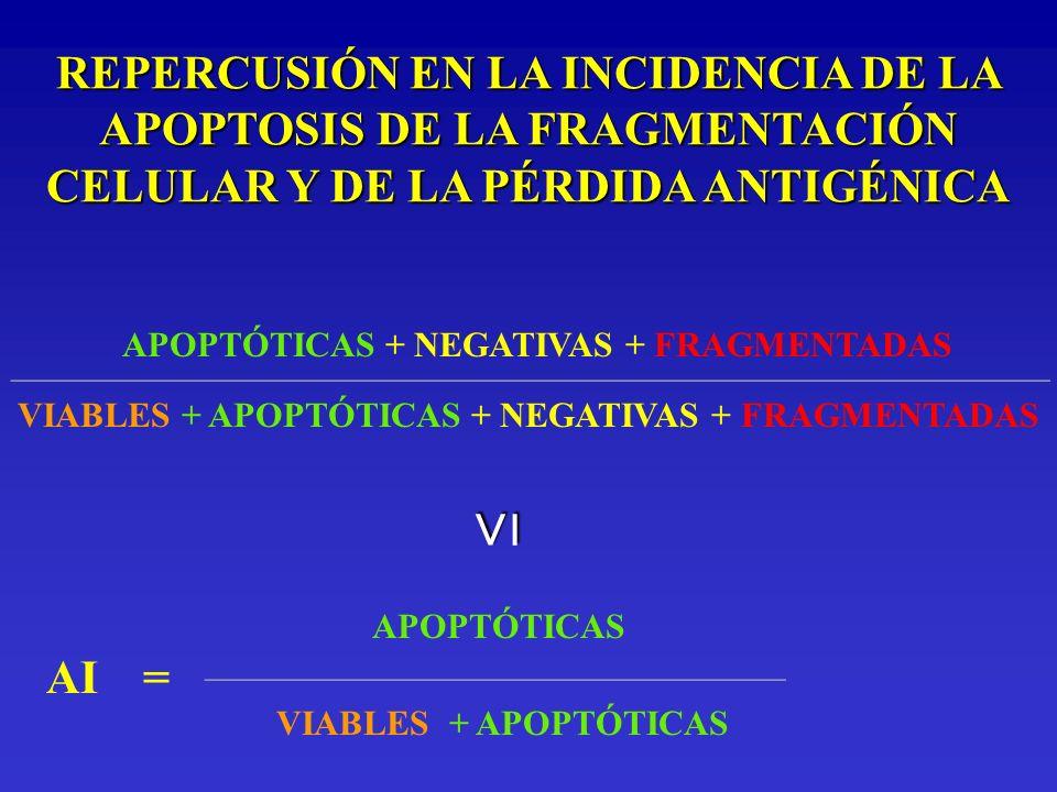 REPERCUSIÓN EN LA INCIDENCIA DE LA APOPTOSIS DE LA FRAGMENTACIÓN CELULAR Y DE LA PÉRDIDA ANTIGÉNICA APOPTÓTICAS + NEGATIVAS + FRAGMENTADAS ___________