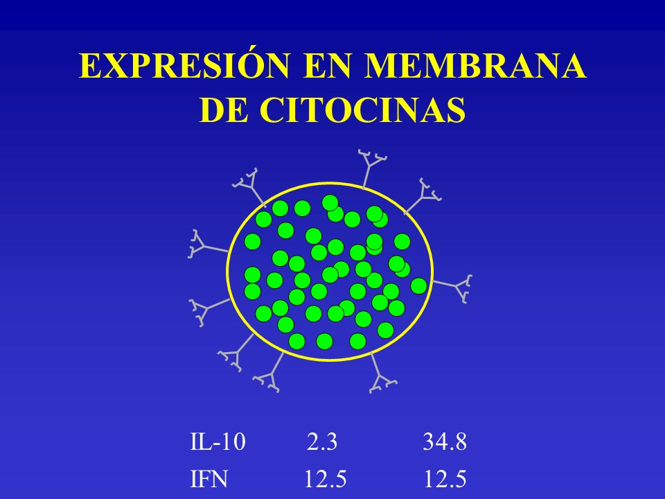 EXPRESIÓN EN MEMBRANA DE CITOCINAS IL-10 2.3 34.8 IFN 12.512.5