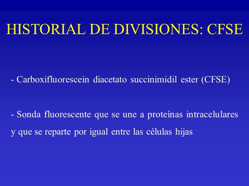HISTORIAL DE DIVISIONES: CFSE - Carboxifluorescein diacetato succinimidil ester (CFSE) - Sonda fluorescente que se une a proteínas intracelulares y qu