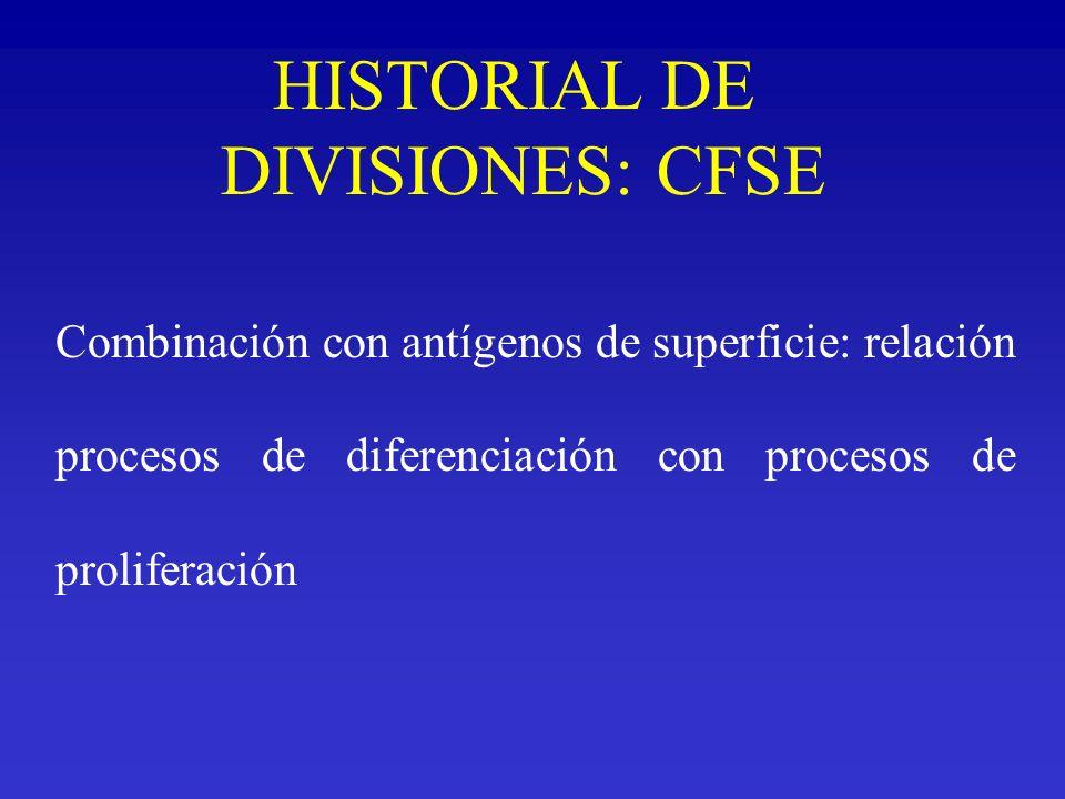 HISTORIAL DE DIVISIONES: CFSE Combinación con antígenos de superficie: relación procesos de diferenciación con procesos de proliferación