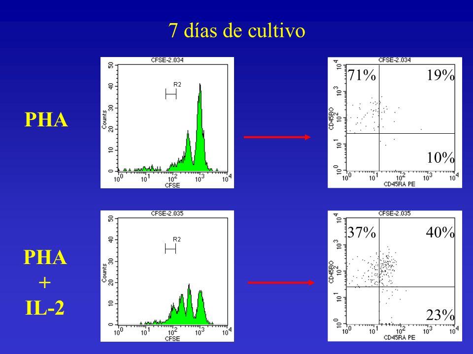 PHA + IL-2 71%19% 10% 37%40% 23% 7 días de cultivo