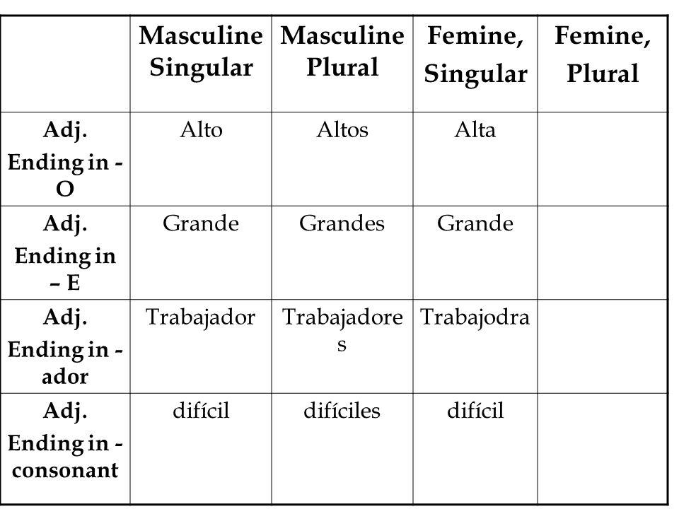 Masculine Singular Masculine Plural Femine, Singular Femine, Plural Adj.