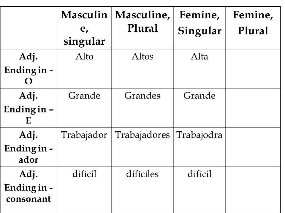 Masculin e, singular Masculine, Plural Femine, Singular Femine, Plural Adj.