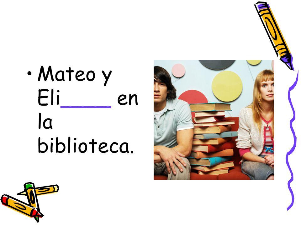 Mateo y Eli____ en la biblioteca.