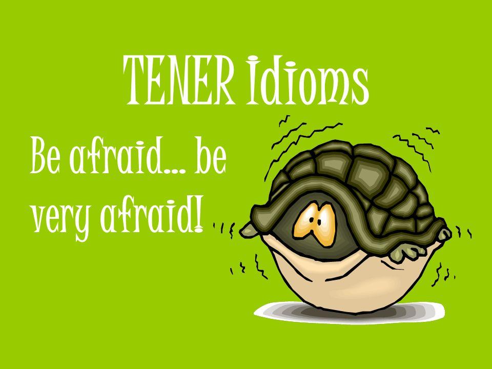 TENER idioms tener suerte to be lucky ¡Gloria tiene mucha suerte porque nunca estudia y todavía tiene una A en español!