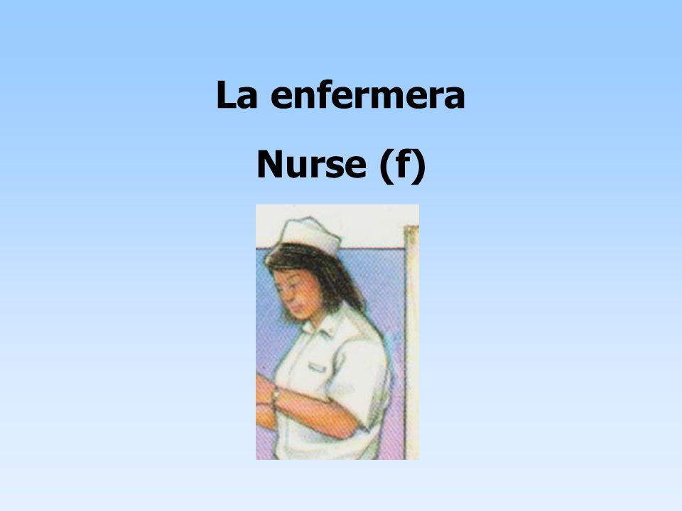 La enfermera Nurse (f)