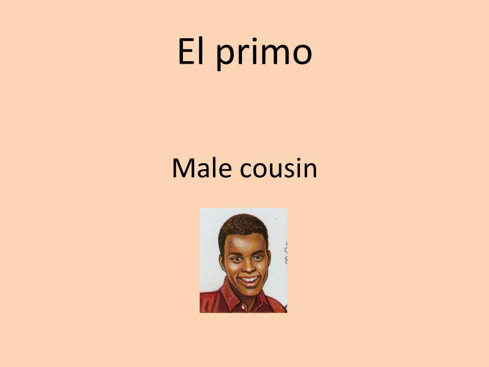 El primo Male cousin
