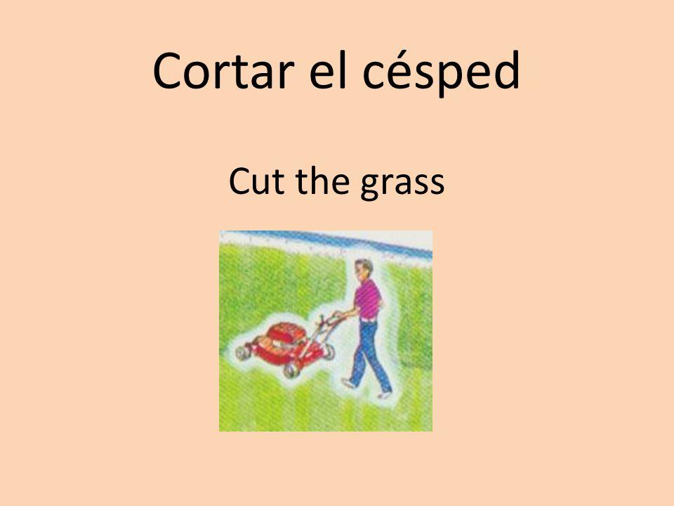 Cortar el césped Cut the grass