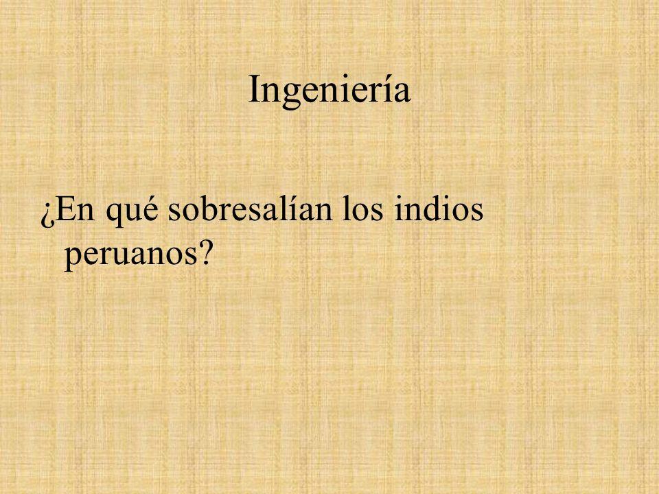 Ingeniería ¿En qué sobresalían los indios peruanos?