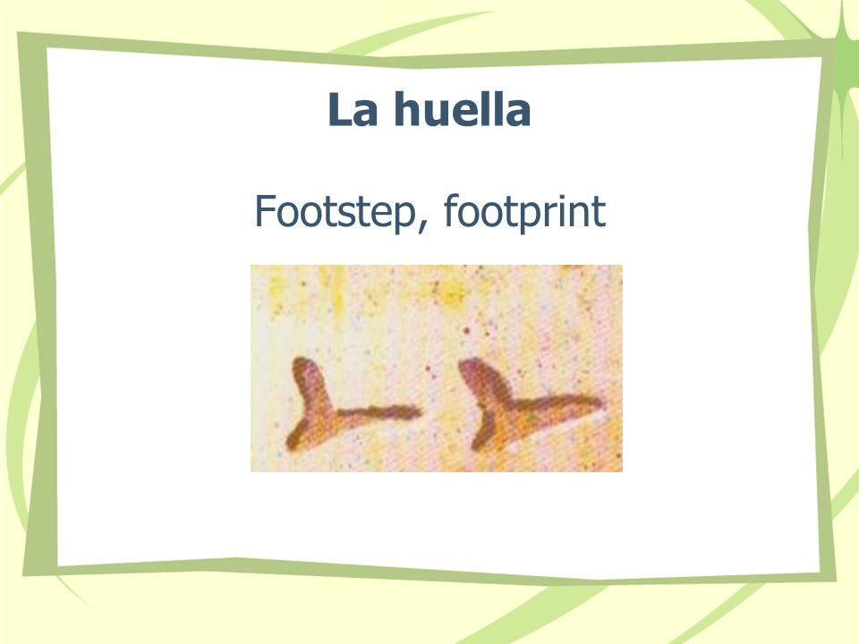 La huella Footstep, footprint