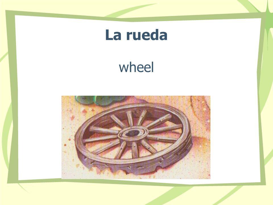La rueda wheel