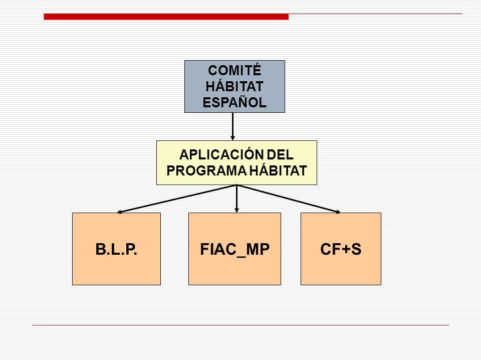 COMITÉ HÁBITAT ESPAÑOL APLICACIÓN DEL PROGRAMA HÁBITAT B.L.P.FIAC_MPCF+S