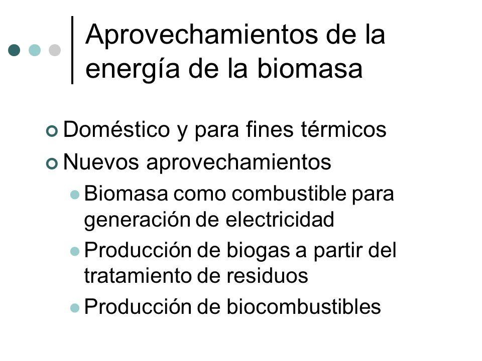 Aprovechamientos de la energía de la biomasa Doméstico y para fines térmicos Nuevos aprovechamientos Biomasa como combustible para generación de elect