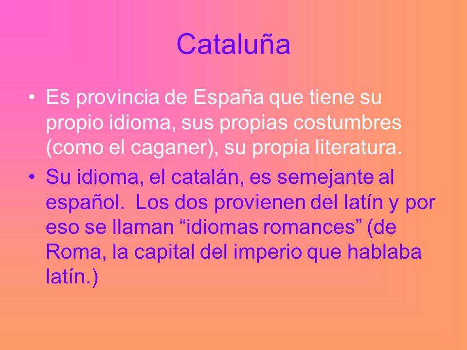 Cataluña Es provincia de España que tiene su propio idioma, sus propias costumbres (como el caganer), su propia literatura.