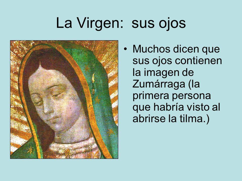 La Virgen: sus ojos Muchos dicen que sus ojos contienen la imagen de Zumárraga (la primera persona que habría visto al abrirse la tilma.)