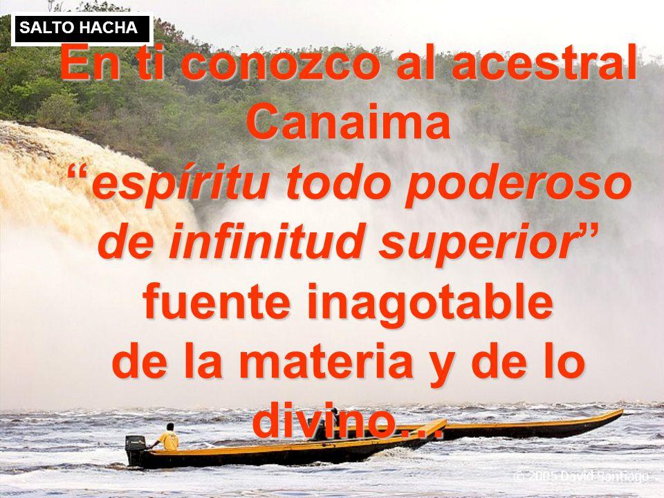 SALTO ANGEL SALTO HACHA VENEZUELA…. Eres mi patria amante, la madre, la maestra, la doctora, considerada el espíritu de la naturaleza, entra la amazon