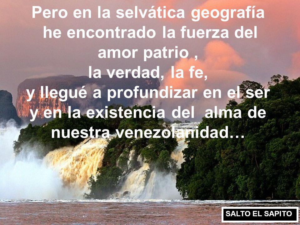Mi Venezuela está herida en las entrañas, está siendo día a día destruida en sus riquezas, en sus valores, en sus principios democráticos, ante la des