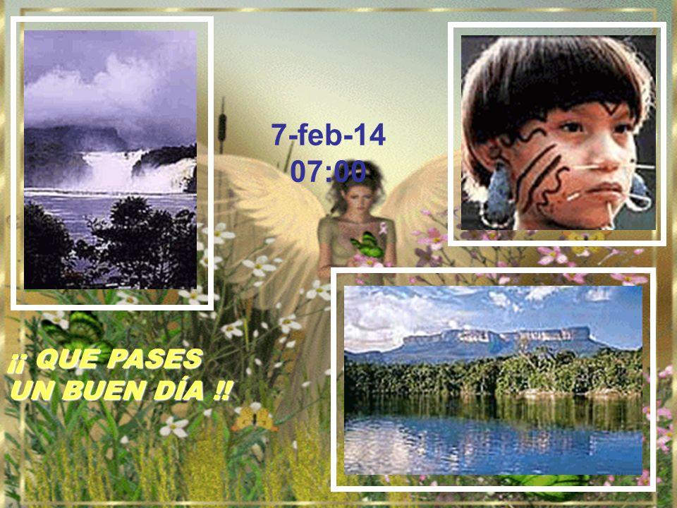 Paz – Pax – Peace – – Pace Shanti – Frieden – – La paix – Мир – Vrede – Ειρήνη
