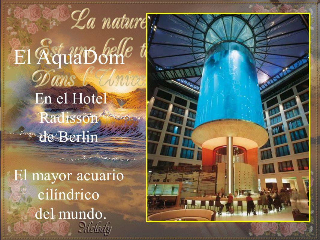 El AquaDom En el Hotel Radisson de Berlin El mayor acuario cilíndrico del mundo.