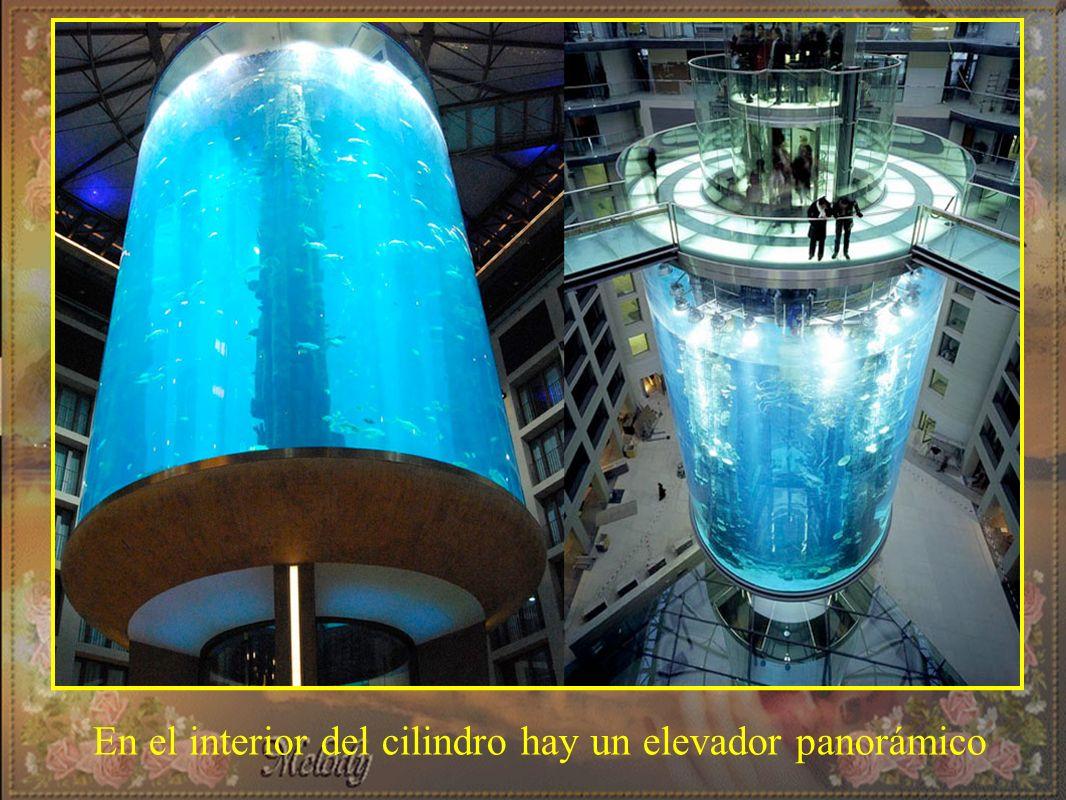 En el interior del cilindro hay un elevador panorámico