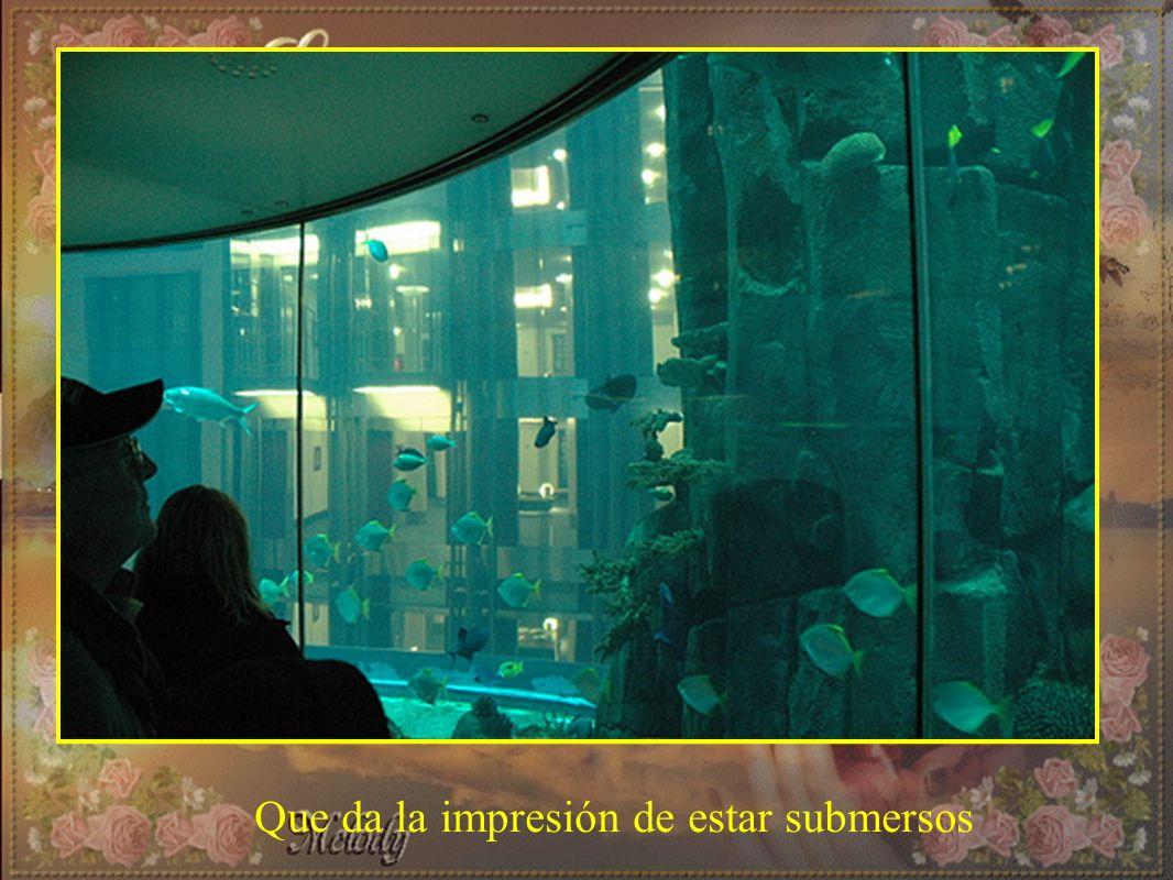 Que da la impresión de estar submersos