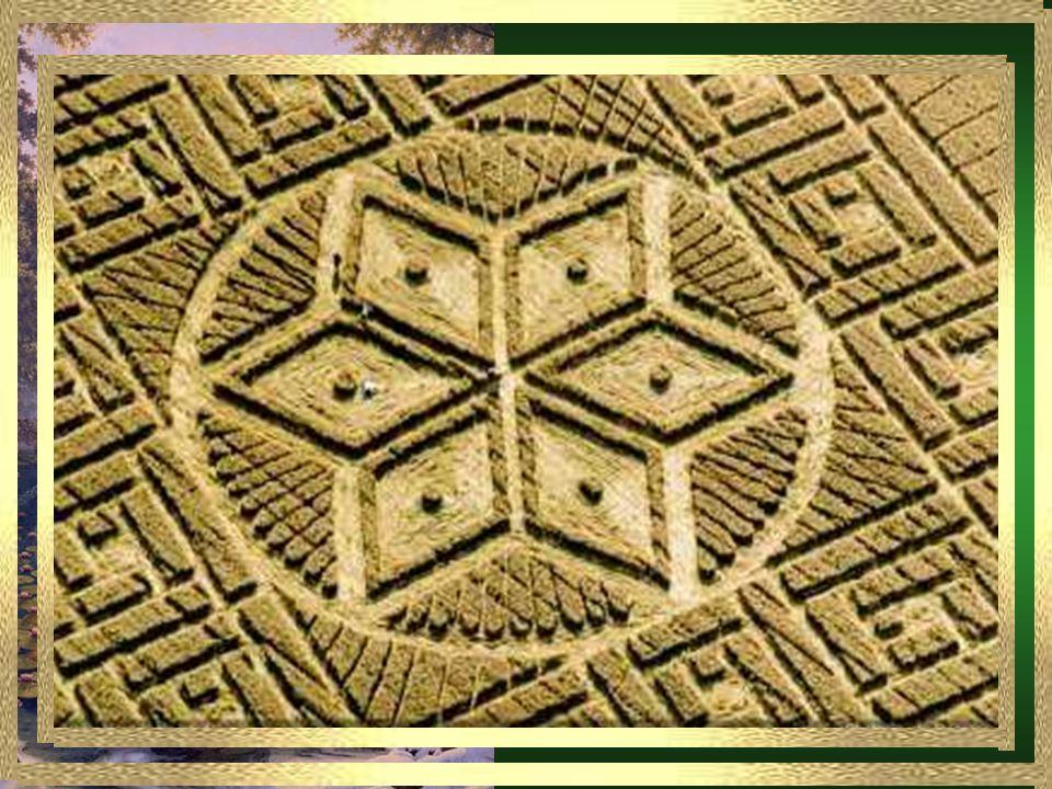 La representación del hombre de Leonardo da Vinci de acuerdo con la geometría sagrada conocida como la Proporción Áurea.