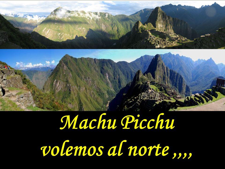 Exacto. Lo que encontrará es un rostro formado por los relieves de las montañas de las Ruinas de Machu Pichu. Lo más interessante es observar los deta