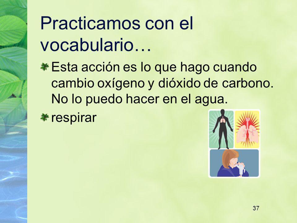 37 Practicamos con el vocabulario… Esta acción es lo que hago cuando cambio oxígeno y dióxido de carbono. No lo puedo hacer en el agua. respirar