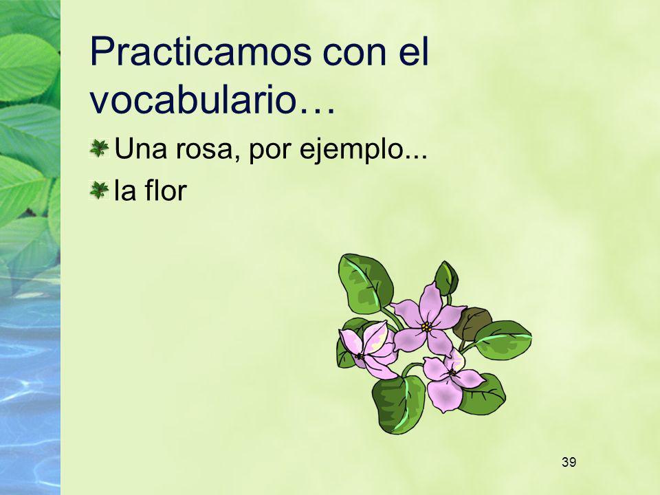 39 Practicamos con el vocabulario… Una rosa, por ejemplo... la flor