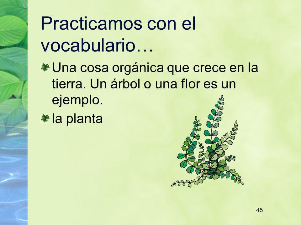 45 Practicamos con el vocabulario… Una cosa orgánica que crece en la tierra. Un árbol o una flor es un ejemplo. la planta