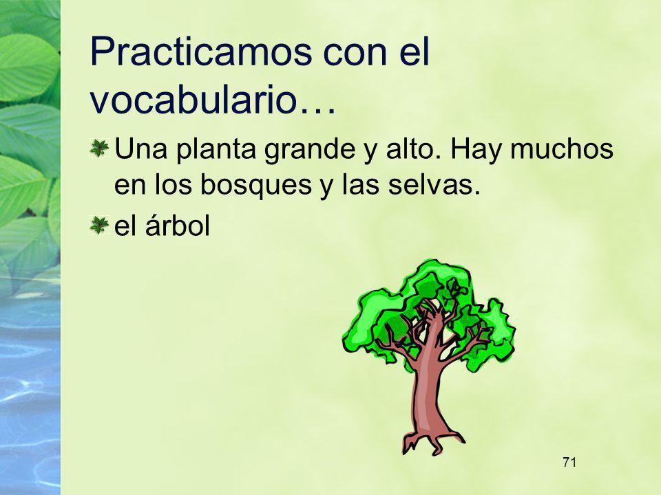71 Practicamos con el vocabulario… Una planta grande y alto. Hay muchos en los bosques y las selvas. el árbol
