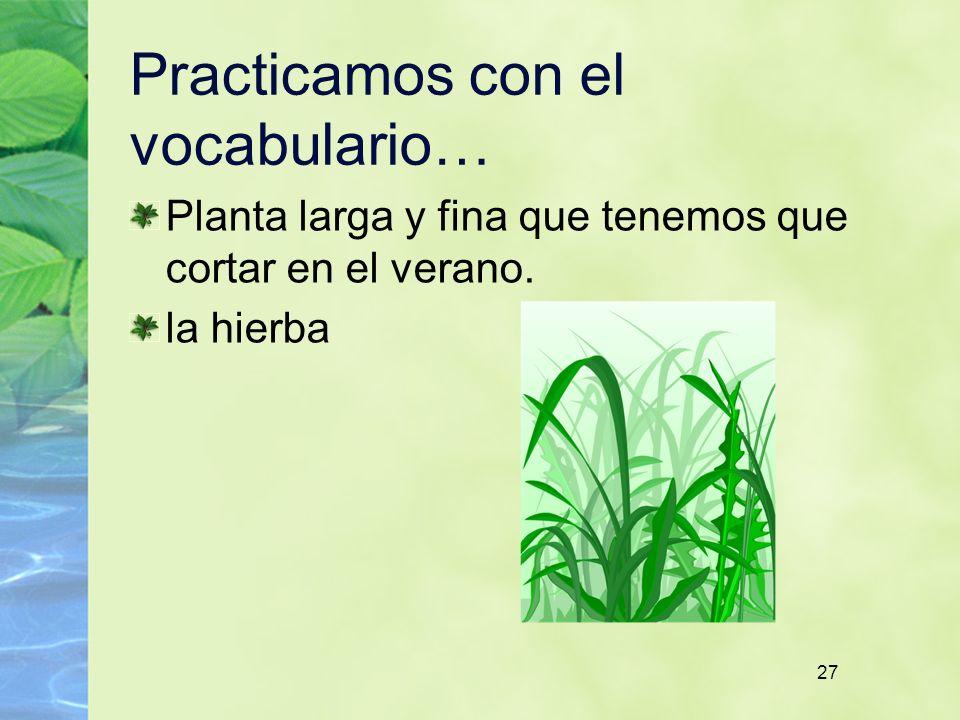 27 Practicamos con el vocabulario… Planta larga y fina que tenemos que cortar en el verano. la hierba