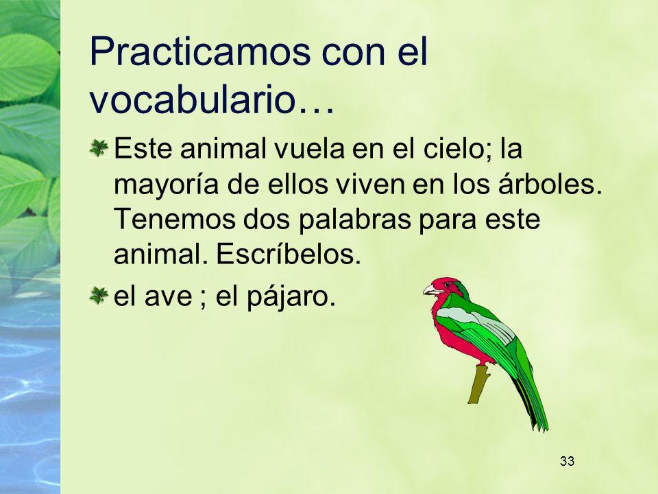 33 Practicamos con el vocabulario… Este animal vuela en el cielo; la mayoría de ellos viven en los árboles. Tenemos dos palabras para este animal. Esc