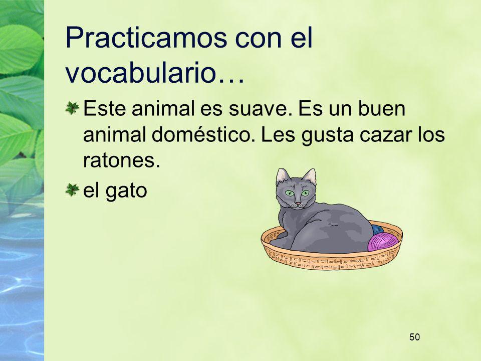 50 Practicamos con el vocabulario… Este animal es suave. Es un buen animal doméstico. Les gusta cazar los ratones. el gato