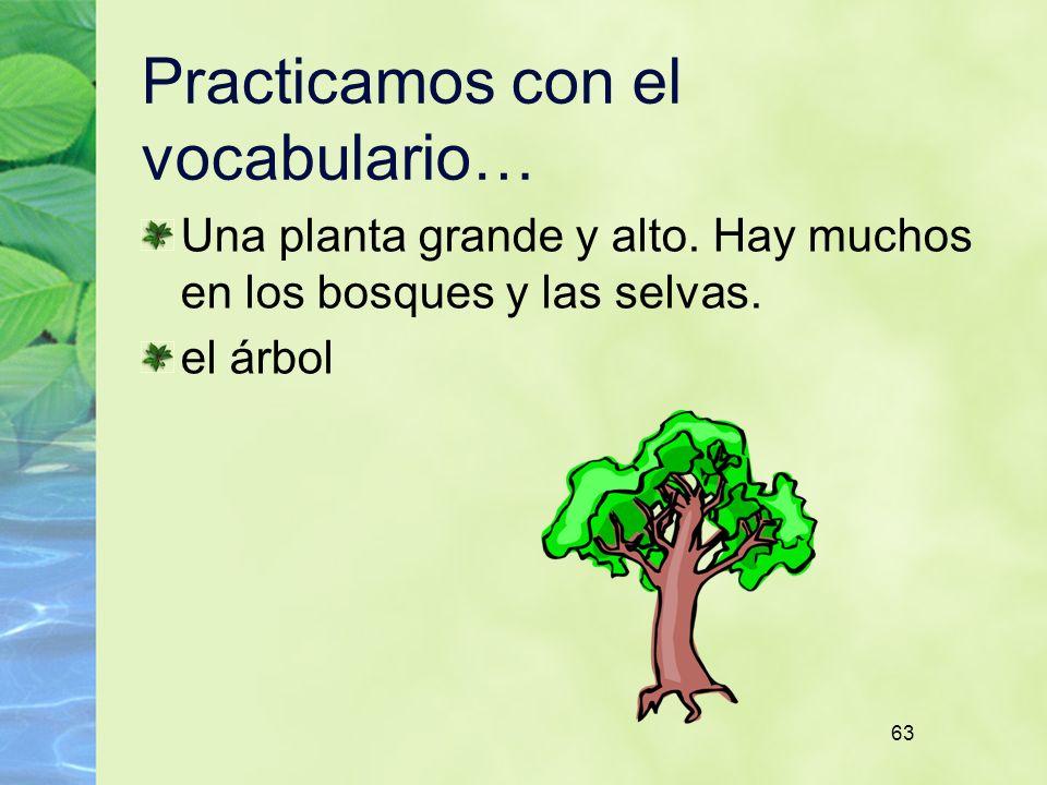 63 Practicamos con el vocabulario… Una planta grande y alto. Hay muchos en los bosques y las selvas. el árbol