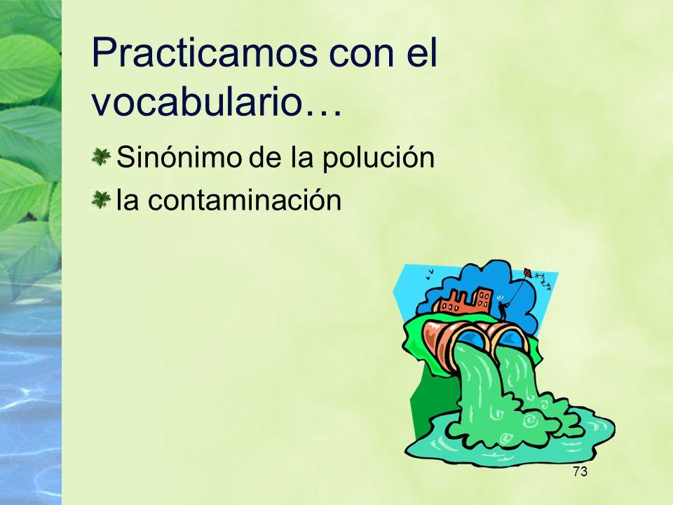 73 Practicamos con el vocabulario… Sinónimo de la polución la contaminación