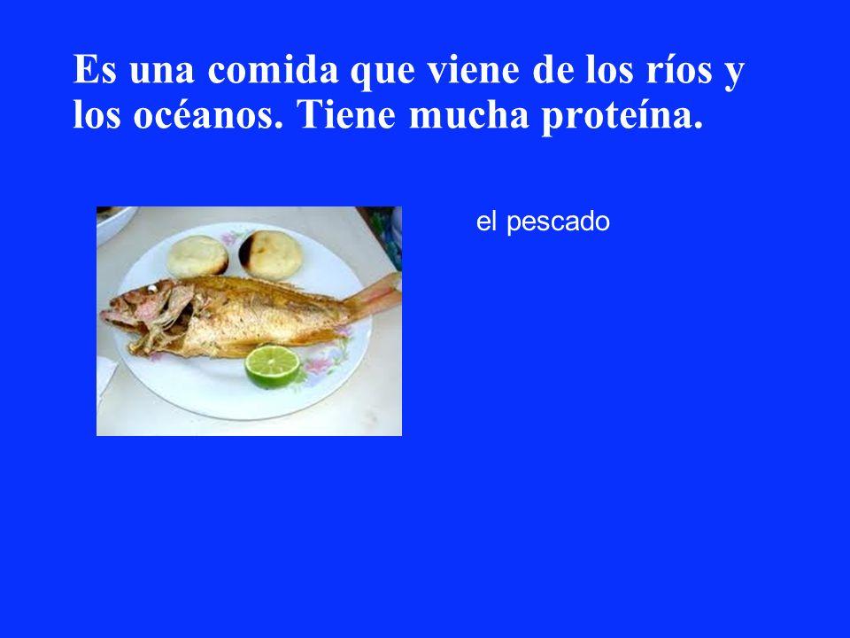 Es una comida que viene de los ríos y los océanos. Tiene mucha proteína. el pescado