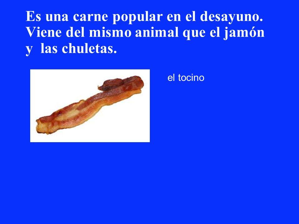 Es una carne popular en el desayuno. Viene del mismo animal que el jamón y las chuletas. el tocino