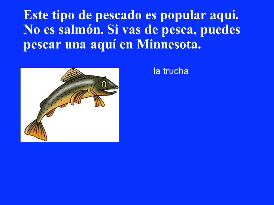 Este tipo de pescado es popular aquí. No es salmón. Si vas de pesca, puedes pescar una aquí en Minnesota. la trucha